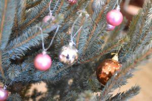 クリスマスには本物のモミの木を!IKEAでモミの木を買う時に絶対必要なもの!!