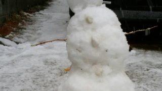 積雪の中、ありがとうございました